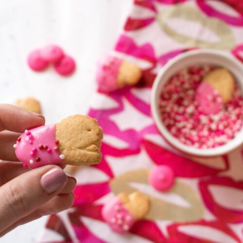 chocolate-dipped animal crackers for valentine's day treats