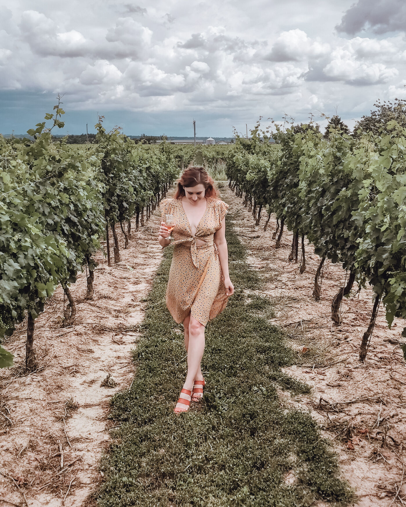 lady wearing a purple dress standing in a vineyard. niagara region wineries to visit now - lakeview wine co
